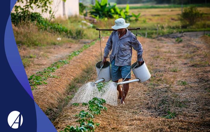 Reforma da Previdência para o Trabalhador rural: Ele tem direito?